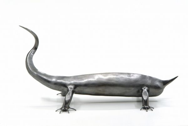 reptile-a-16-doigts-1600x12008A8E1ABB-1934-F4CC-97D6-7FB8C64B8268.jpg
