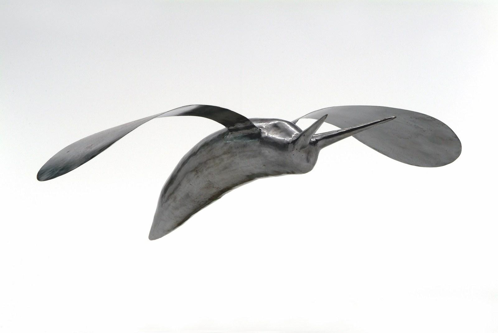 Limace volante