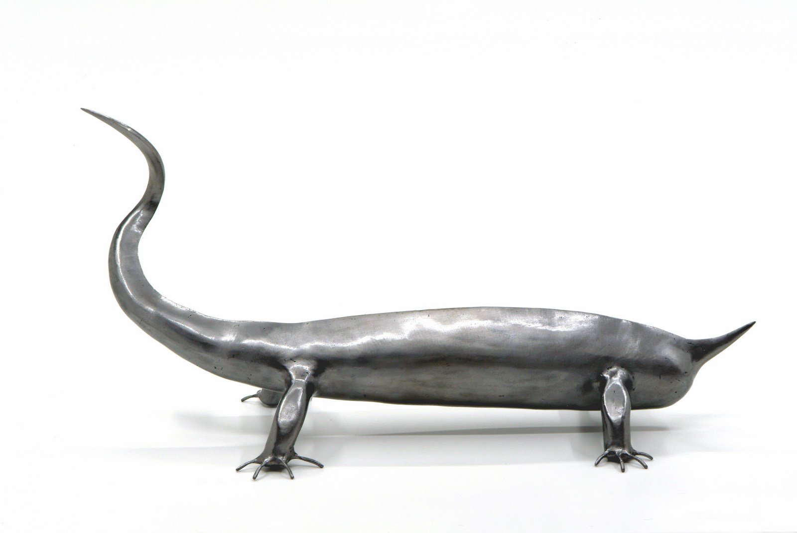 Reptile à 16 doigts