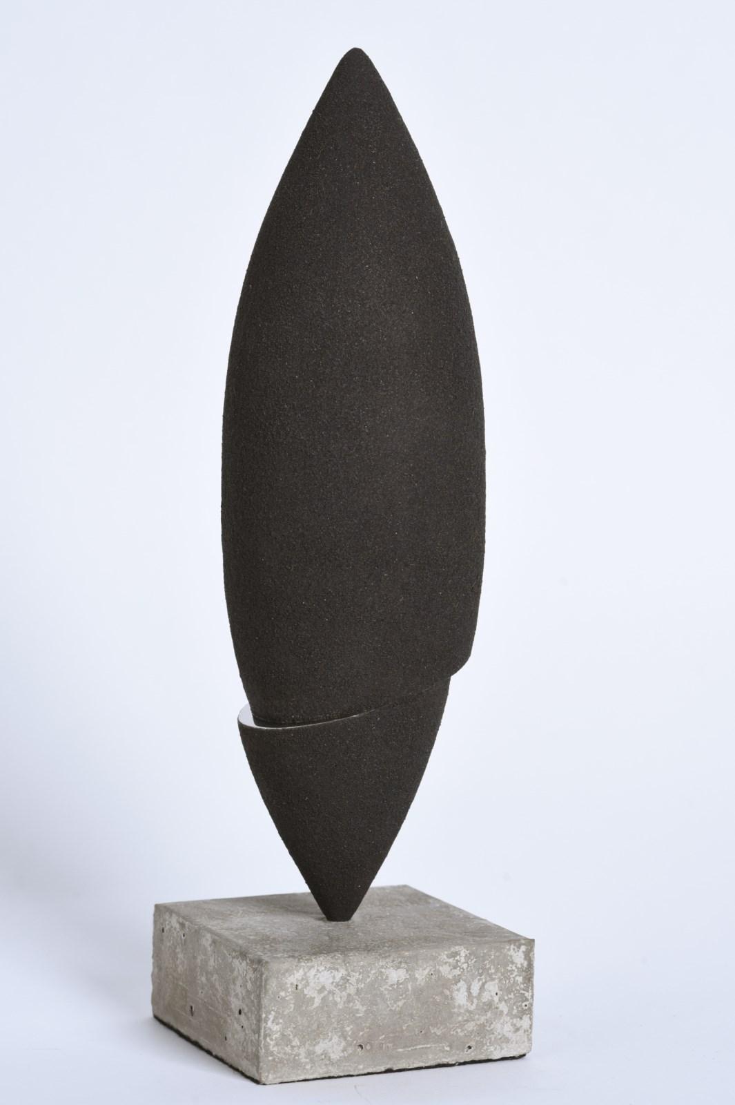 Sculpture-limaille-de-fer-inox-poli-miroir-hauteur:36cm-2016